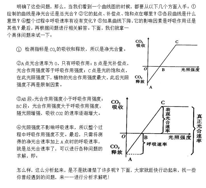 光合速率曲线图详解
